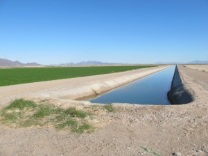 Irrigated vs. fallow fields