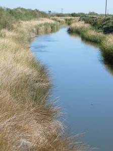 More natural canal