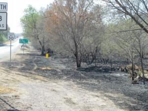 Burn scar in Fort Davis