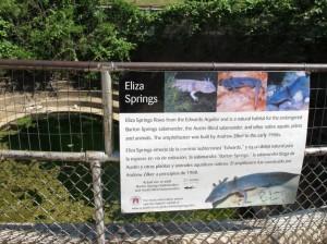 Eliza Springs
